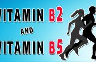 Vitamin B5 & B2 In Brief