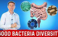 Increase Gut Bacteria Diversity: