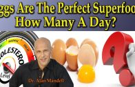 EGGS – Natures Perfect Superfood
