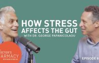 How Stress Affects The Gut